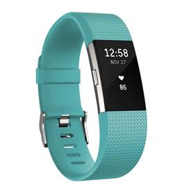 Fitbit Charge 2 Groen Small