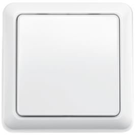 KlikAanKlikUit wandschakelaar AWST8800